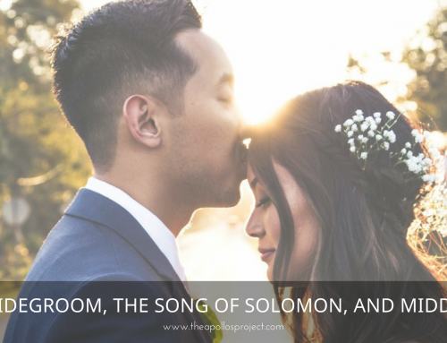 The Bridegroom, The Song of Solomon, and Middle Age